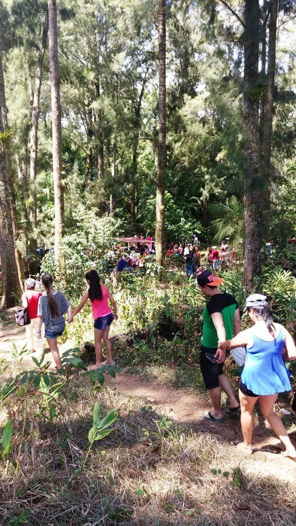 forest-trinidad