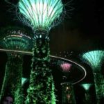 Gardens by the bay - singapore