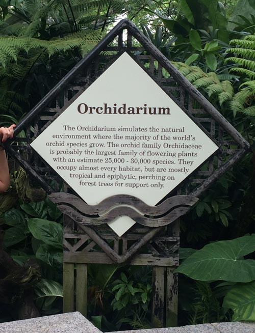 Orchidarium @ Singapore Botanic Gardens